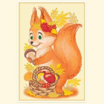 Little-squirre