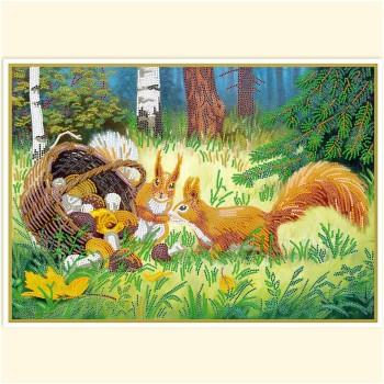 Curious-squirrels