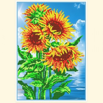Sunflowers  rs-816, 33Х45