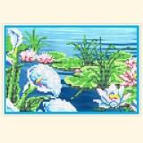 Калы и водные лилии