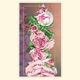 Розовая рапсодия