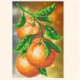 Ветка апельсина