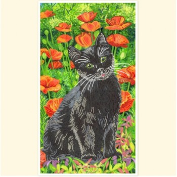 Cat-on-the-poppy-field